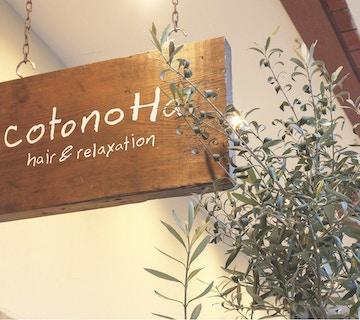 cotonoHa hair&relaxation 大宮店 【コトノハ】店内